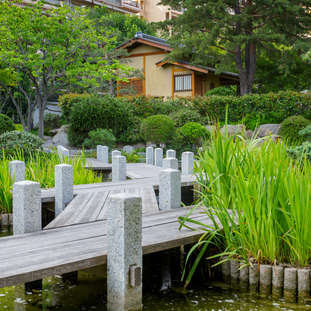 """Japanese Garden or Jardin Japonais"" stock image"
