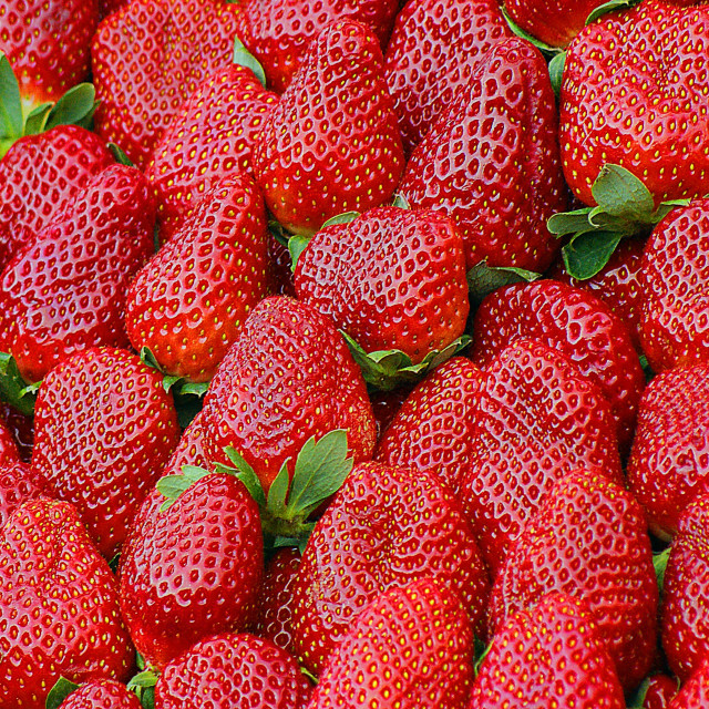 """strawberry"" stock image"