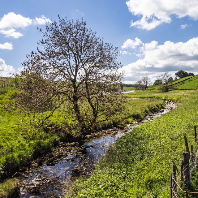 """Yorkshire Dales - Hetton Common Beck"" stock image"