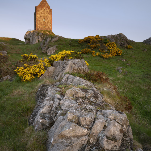 """""""Sunrise at Smailholm Tower"""" stock image"""