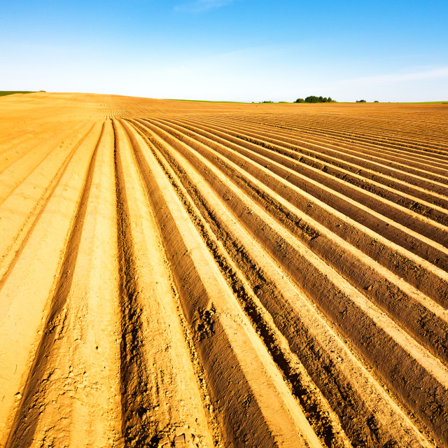 """""""plowed field prepared for planting crops in spring. Horizontal v"""" stock image"""