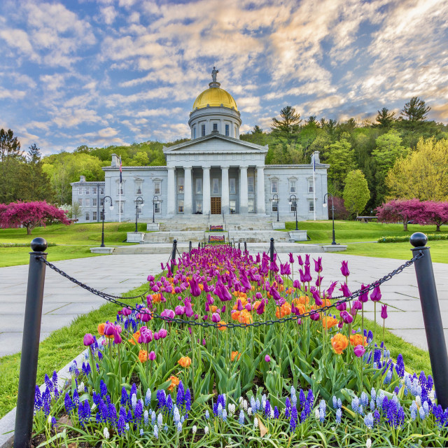 """""""Vermont State Capitol in Montpelier"""" stock image"""