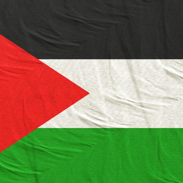 """3d rendering of Palestine flag"" stock image"