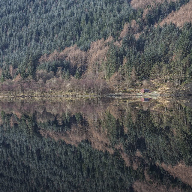 """Perfect Reflection - Loch Eck"" stock image"