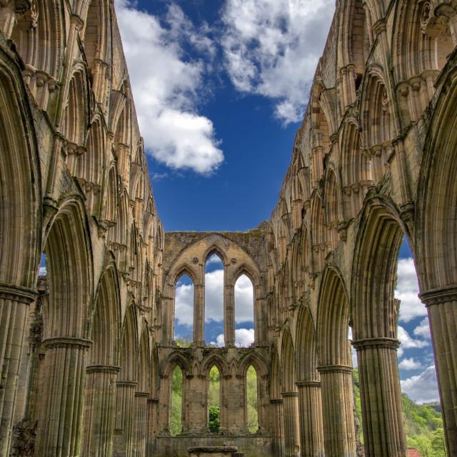 """""""Choir at Rievaulx Abbey"""" stock image"""