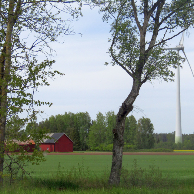 """Sweden countryside"" stock image"