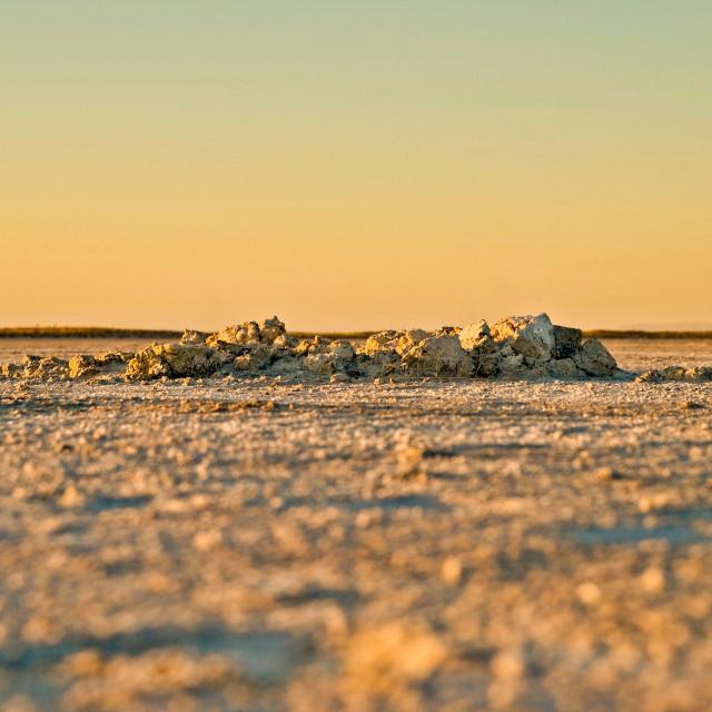"""""""Salt Flat at Sunset"""" stock image"""