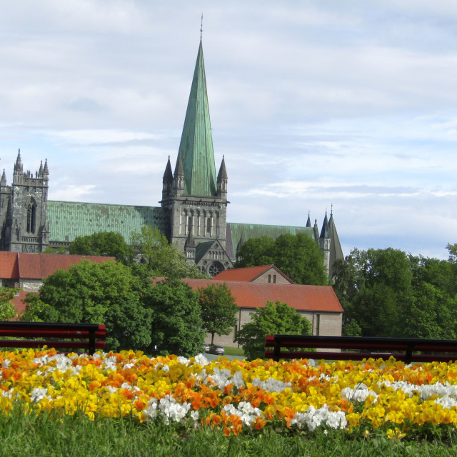 """Nidaros Cathedral, Trondheim from afar"" stock image"