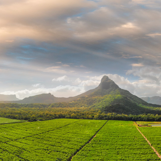 """""""Panoramic sunset view of Mt Rempart and surrounding meadows, Mauritius"""" stock image"""