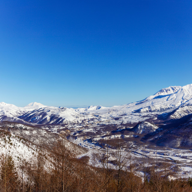 """""""Panorama of Mt. St. Helens and Landscape"""" stock image"""
