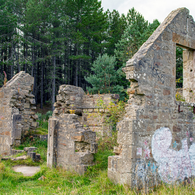 """""""The Millie Bothy"""" stock image"""