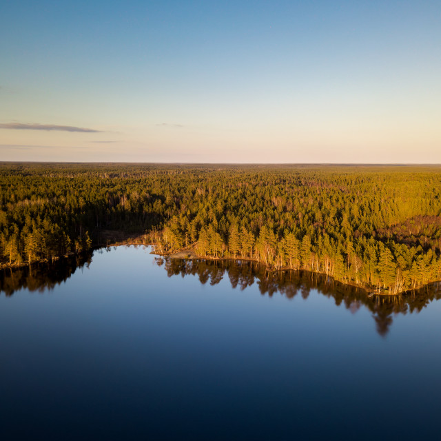 """""""Aerial view of forest and lake"""" stock image"""