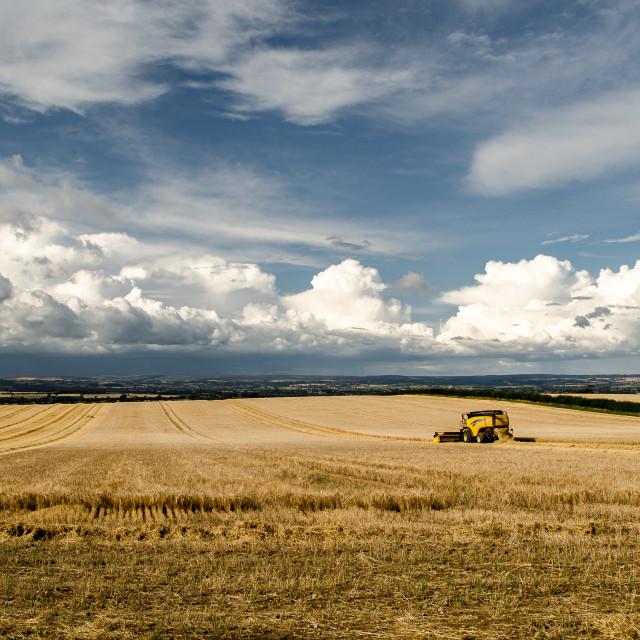 """Harvest weather"" stock image"