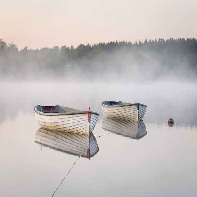 """""""Misty Morning glow"""" stock image"""