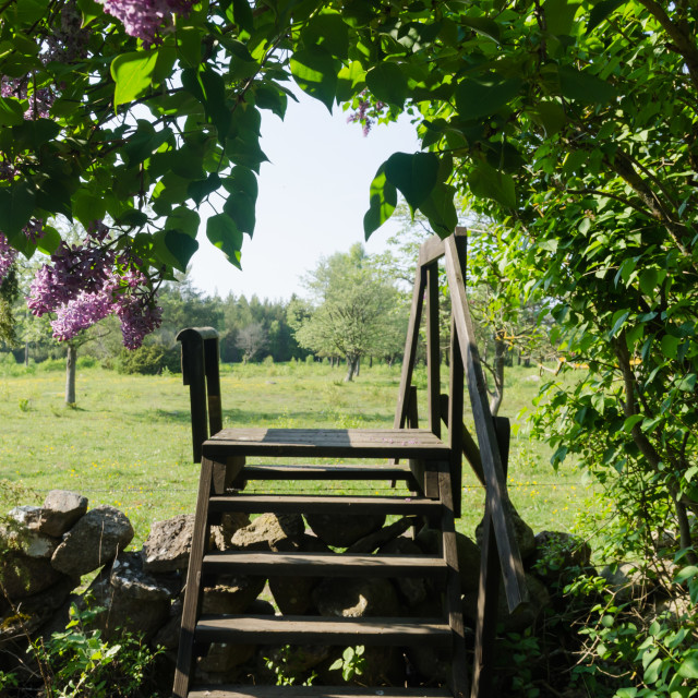 """""""Wooden stile crossing a dry stone wall in a rural landscape by s"""" stock image"""