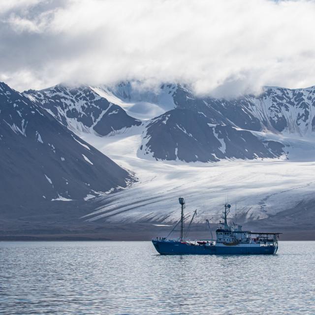"""""""boat near the glaciers"""" stock image"""