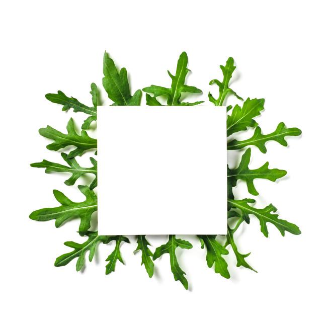 """White paper square on arugula leaves"" stock image"