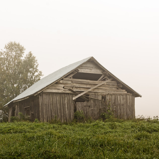 """""""Old Barn House On a Foggy Summer Morning"""" stock image"""