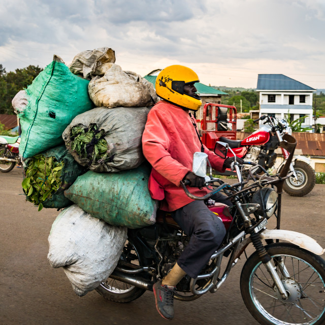 """near Kisumu, Kenya - March 8, 2019 - a man on a heavily loaded motorbike"" stock image"