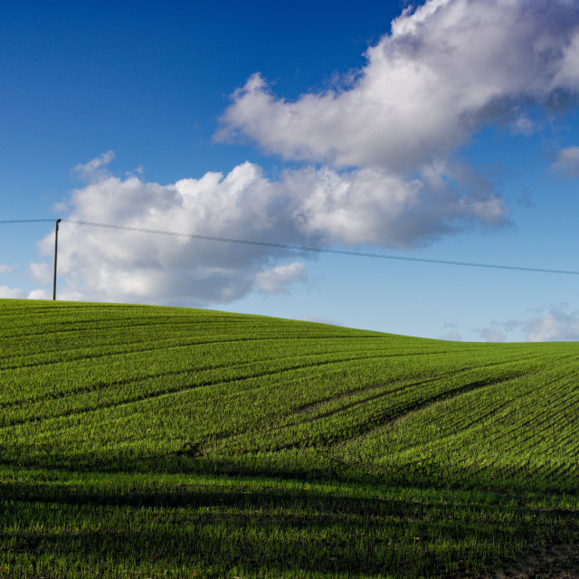 """Clouds over field"" stock image"