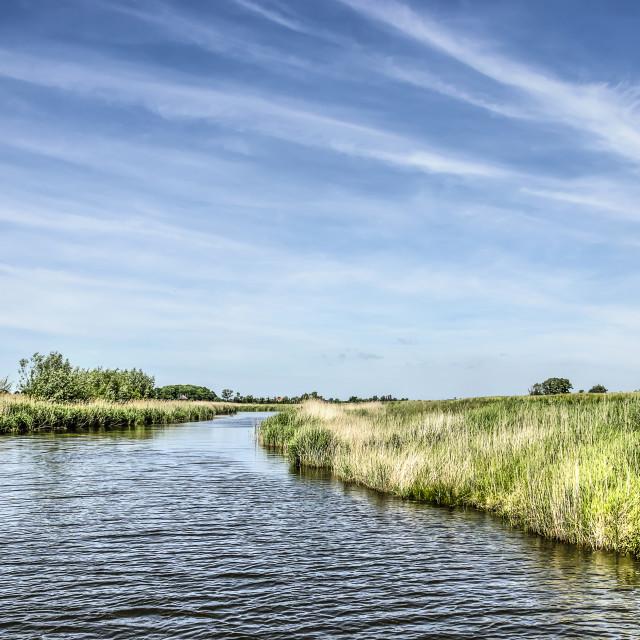 """Polder creek on the island of Walcheren"" stock image"
