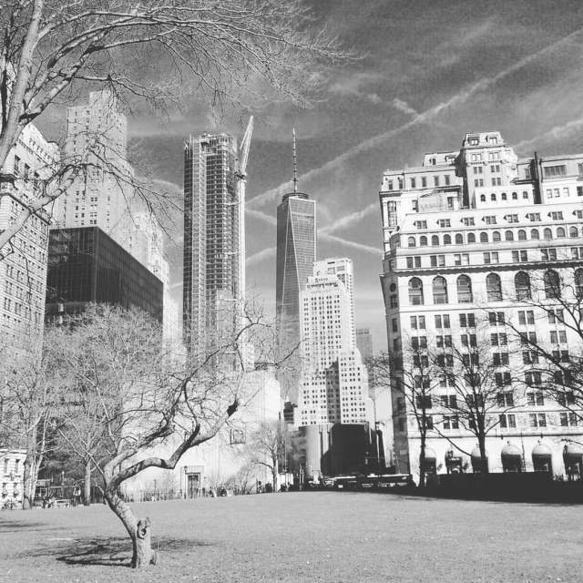 """View from Battery park New York"" stock image"