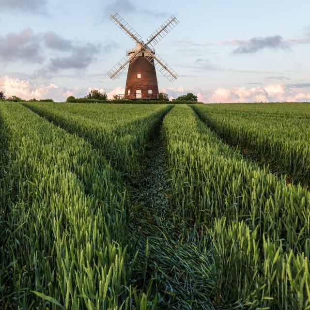 """John Webb's Windmill, Thaxted"" stock image"