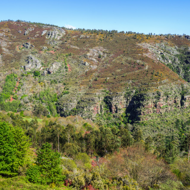 """""""Tectonic folds in the slate cliffs of the geopark O Courel"""" stock image"""