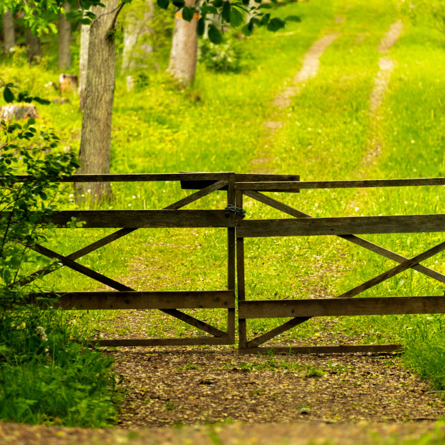 """""""Gated road"""" stock image"""