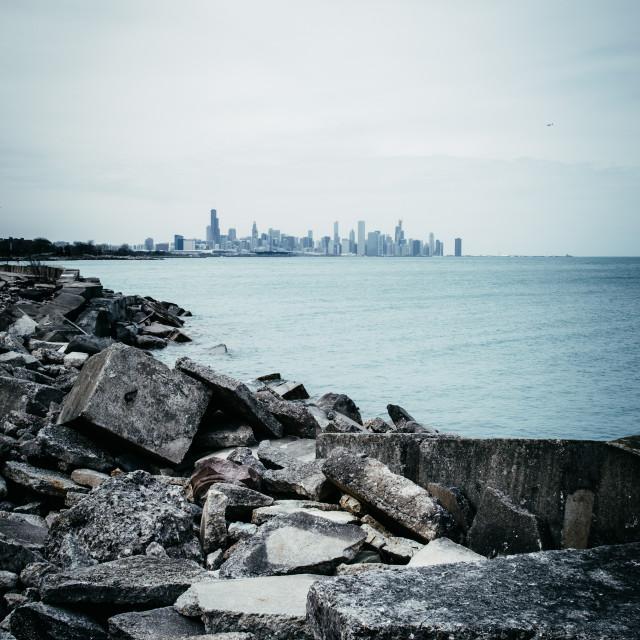 """Chicago Cityscape"" stock image"