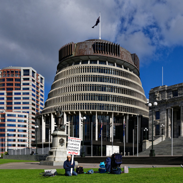 """Ollie Langridge, Climate Change Protestor, Wellington, New Zealand"" stock image"