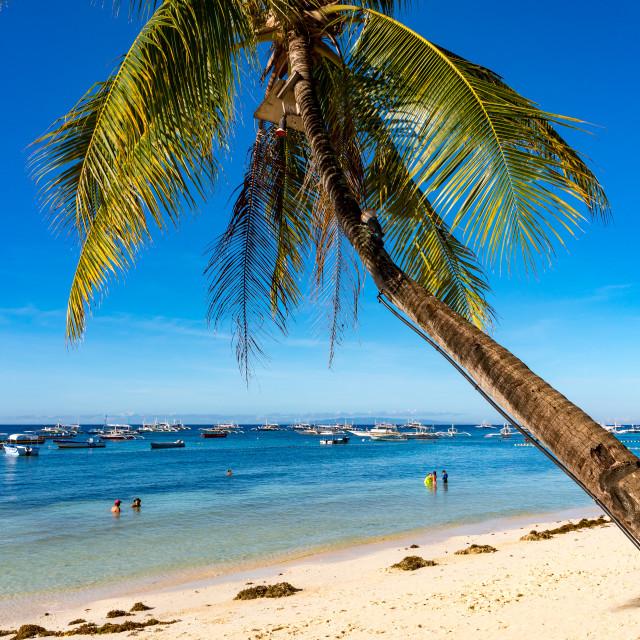 """Alona Beach Panglao Island Bohol Philippines"" stock image"