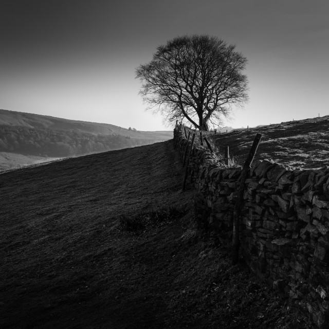 """Stone wall on Shuttingsloe Hill, The Peak District, UK"" stock image"