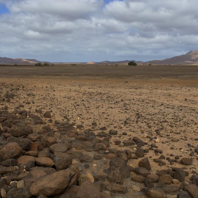 """""""Landscape in Boavista (Cape Verde)"""" stock image"""