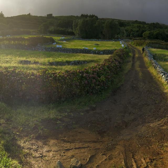 """Landscape of Corvo"" stock image"