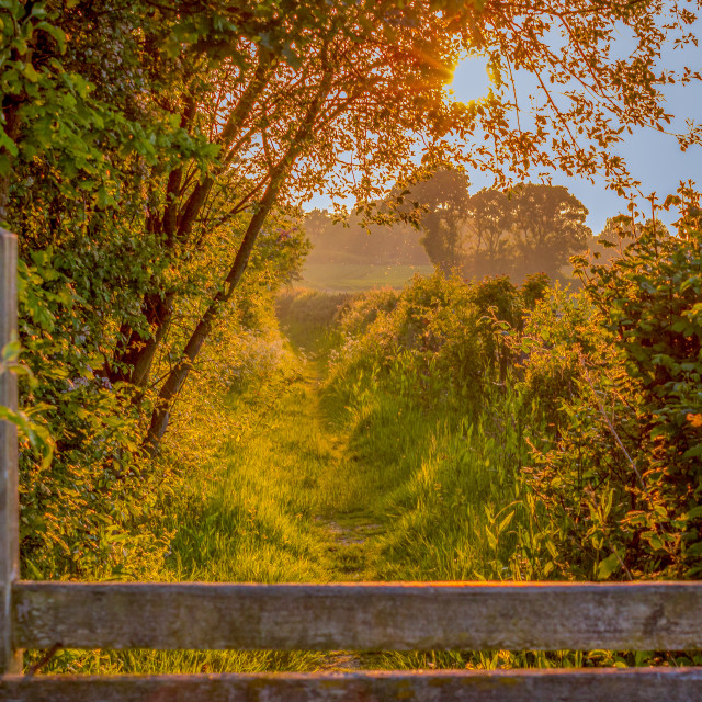 """English Countryside Pathway at Sunset"" stock image"