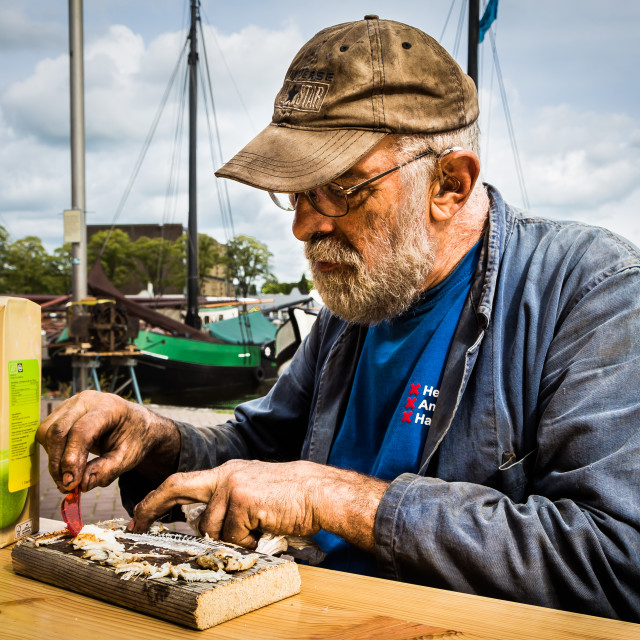 """Amsterdam, September 2018 - portrait of an old worker eating traditional herring with oil covered hands"" stock image"