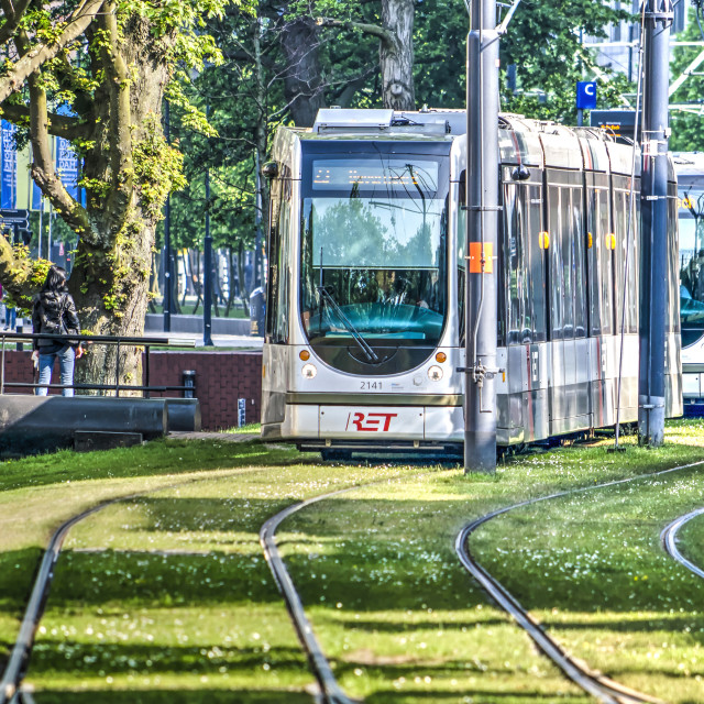 """""""City trams on grass-lined tracks"""" stock image"""
