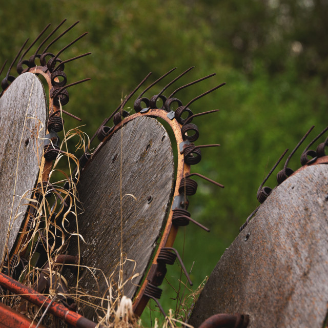 """""""Close up of vintage agriculture discs with wooden circles and attached metal tines against a blurred green background"""" stock image"""