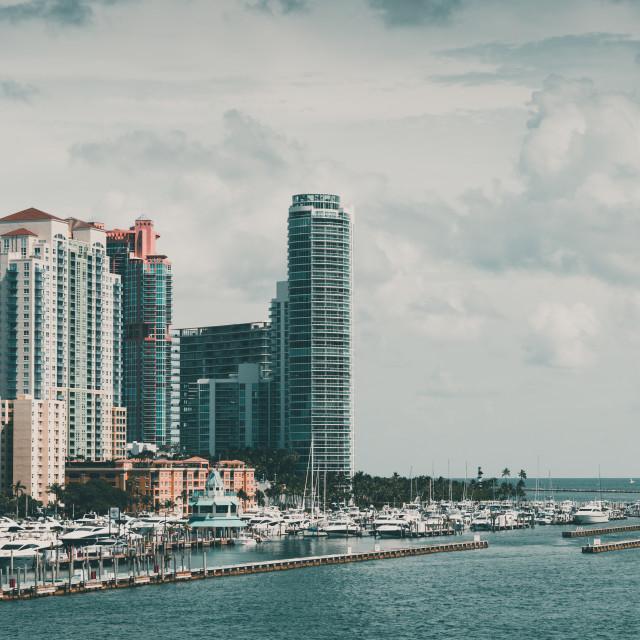 """""""Miami South Beach Marina"""" stock image"""