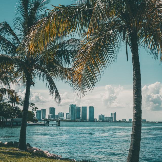 """""""Miami Downtown"""" stock image"""