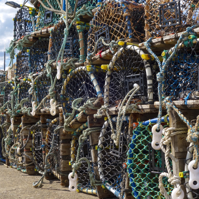 """""""Lobster pots lined up on the jetty in the south bay at scarborough yorkshire england"""" stock image"""