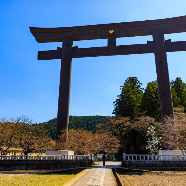 """Oyunohara large torii gate"" stock image"