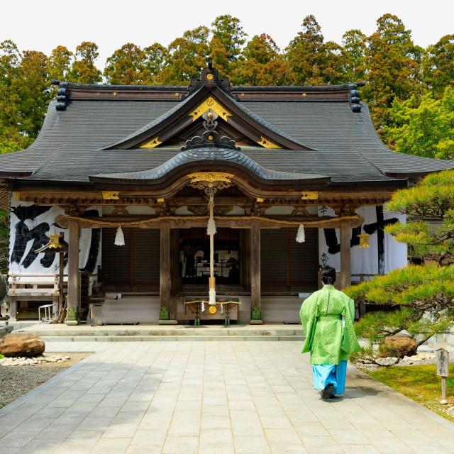 """Kimono dress and Japanese temple"" stock image"