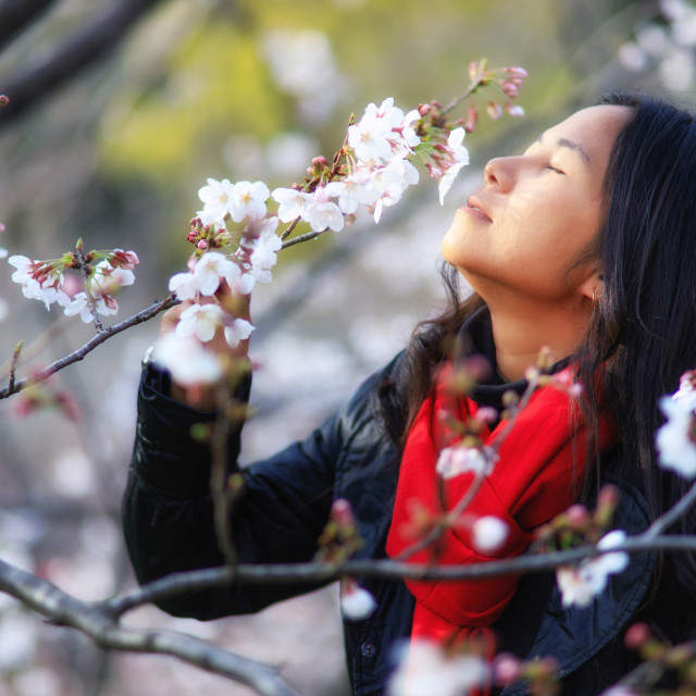 """""""Lady at Japanese spring"""" stock image"""