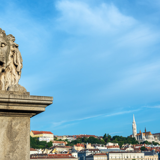 """Chain Bridge Lion and Fisherman's Bastion"" stock image"