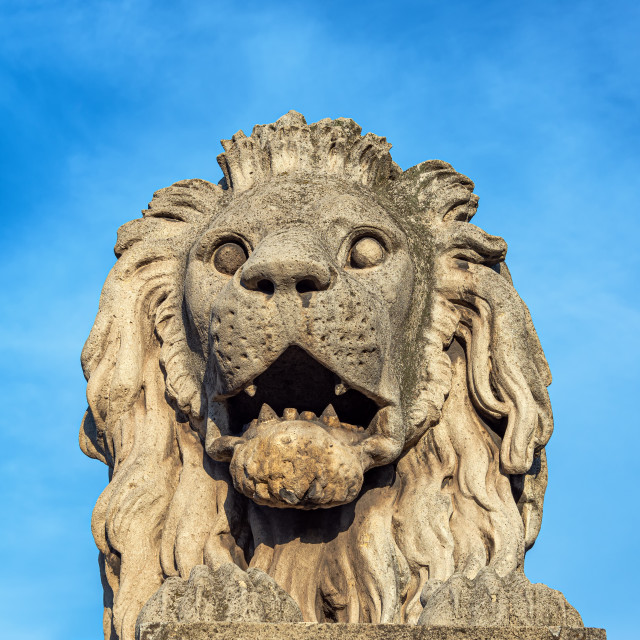"""Lion on Budapest Chain Bridge"" stock image"