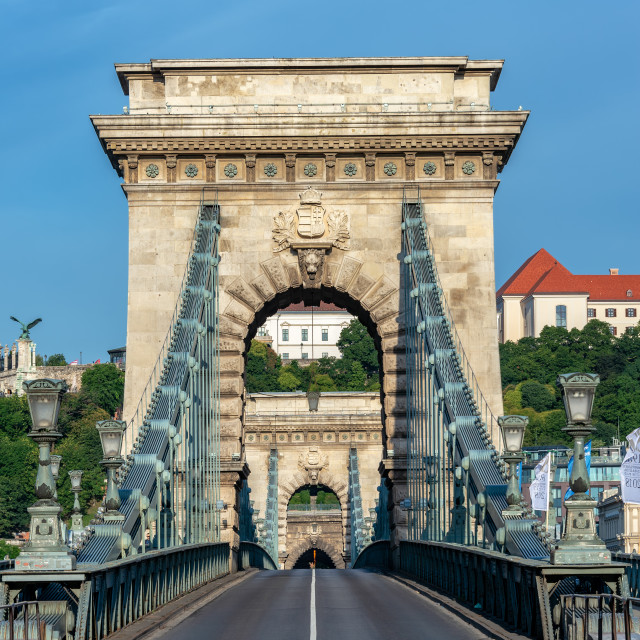 """Szechenyi Chain Bridge Vertical View"" stock image"