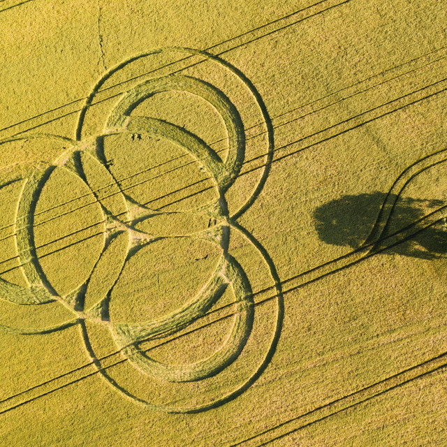 """The first crop circle of the season appears at Long Wood, Nr Littleton in Hampshire today. Crop circles often appear in the corn fields of Hampshire, Wiltshire and Dorset. This image is taken by drone. Photograph By Chris Gorman / Big Ladder"" stock image"