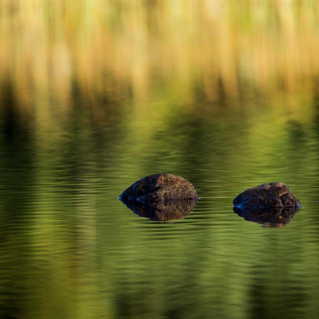 """""""rocks reflection"""" stock image"""